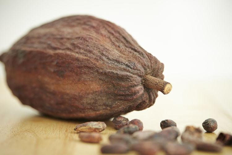 危険なチョコレート製品②【カカオ】