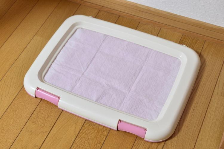 トイレトレーニングの注意点①【トイレの場所と大きさ】