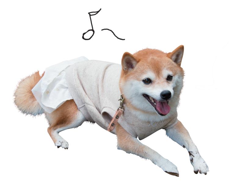 犬たちのホンネ1
