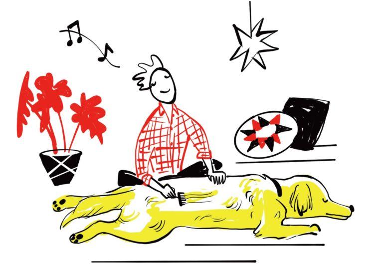 【愛犬のこと、ホントにわかってる!?】7つの『ホンネ』を犬目線で検証!