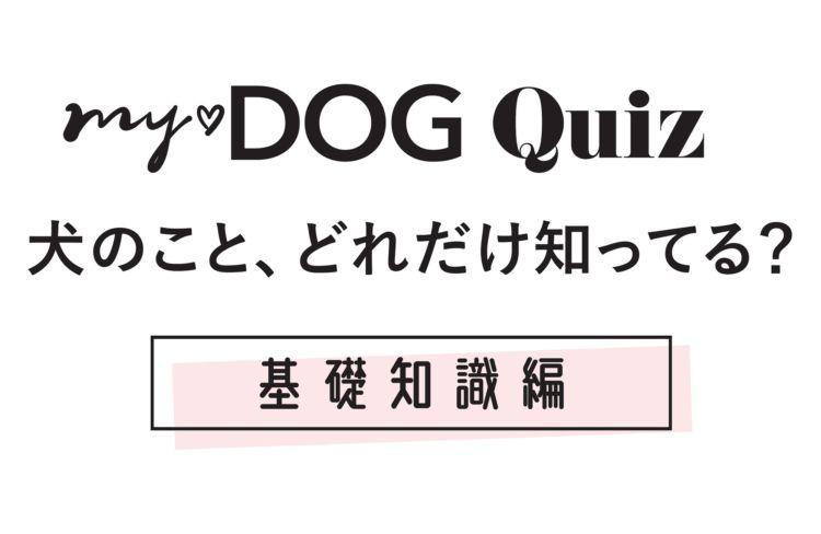 【my♡DOG Quiz 犬のこと、どれだけ知ってる?】基礎知識編