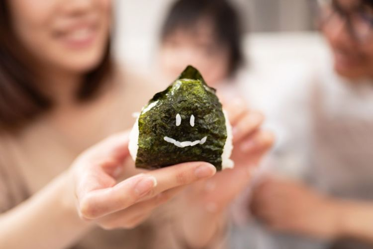 【獣医師監修】犬が海苔(生)を食べても大丈夫?佃煮やおにぎりは?メリットや適量、注意点!