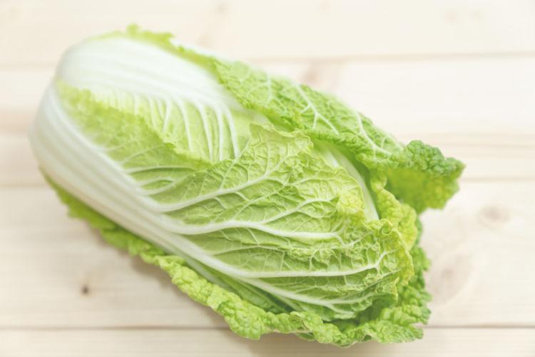 ブロッコリーの仲間③【白菜】