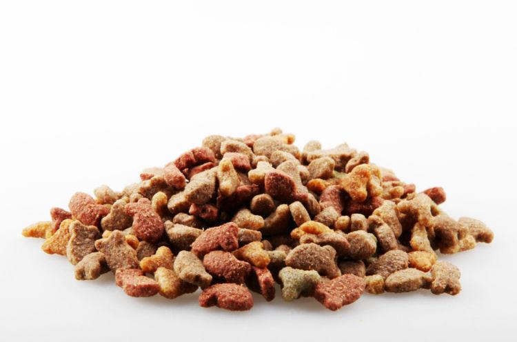 犬に与える炭水化物、1日に必要な量は?