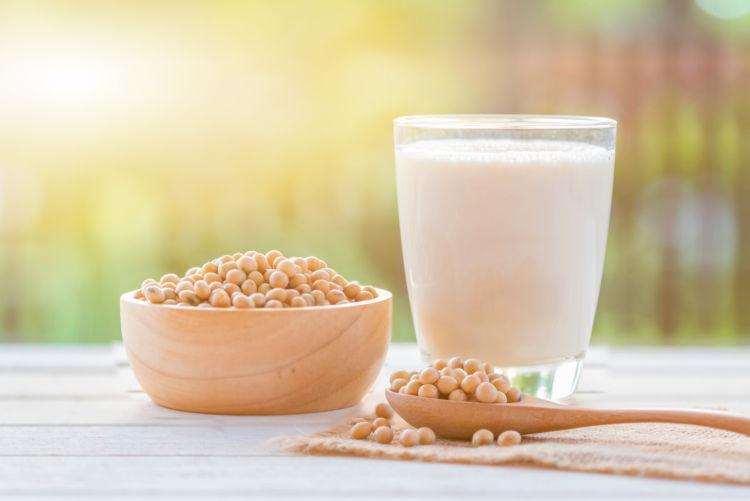 【獣医師監修】犬に豆乳を与えても大丈夫?豆乳のメリット(栄養効果)与える量や注意点は?