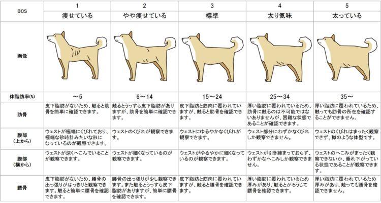 犬のボディコンディションスコア(BCS)評価表を使って肥満度を判定しましょう !