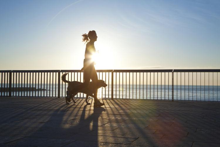【獣医師監修】実践!愛犬の運動ダイエット 具体的な対策や運動量と方法は?
