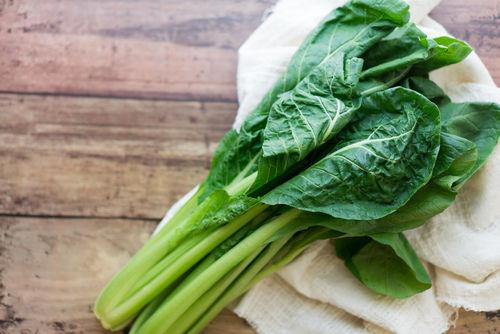 【獣医師監修】犬が小松菜を食べても大丈夫?生の小松菜やシュウ酸カルシウム結石に注意!