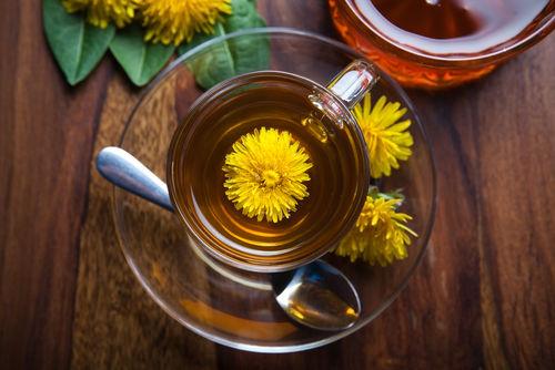 犬に与えても良いお茶「タンポポ茶」「そば茶」など