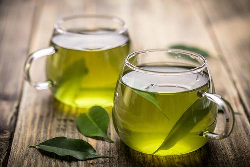 犬に与えると危険なお茶「緑茶」「紅茶」など