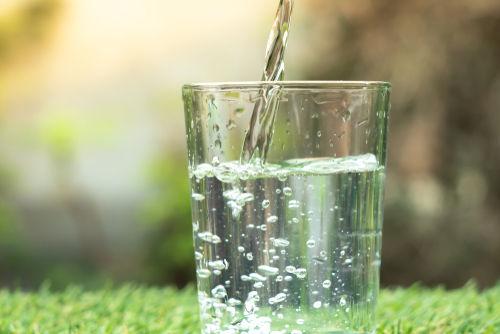 愛犬に飲ませる「ミネラルウォーター」と「水道水」の違いは?