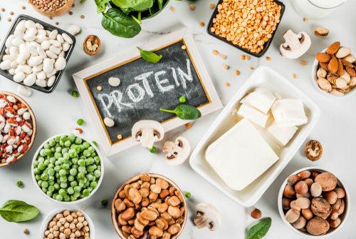 大豆に含まれる栄養素①「植物性たんぱく質」