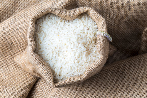 愛犬に白米を与えるメリットと栄養素は?