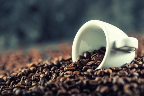 犬に危険な食べ物⑫【カフェイン】