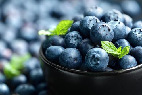 食べて大丈夫な果物⑨「ブルーベリー」