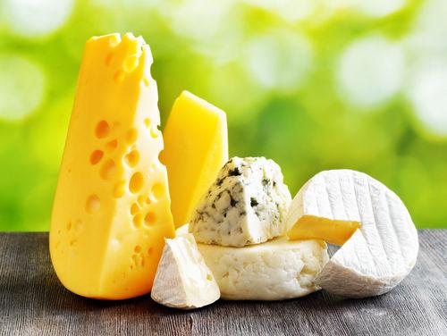 【獣医師監修】犬に人間用のチーズをあげても大丈夫?アレルギーや塩分に注意!適量は?