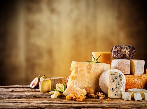 犬にはどんな種類のチーズがおすすめ?