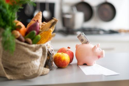 愛犬に手作りご飯を与えるデメリット!栄養不足や手間とコスト
