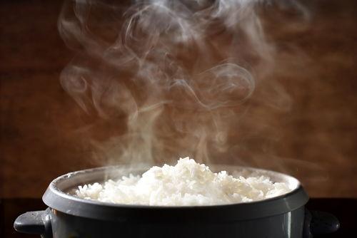 お米を与える際の注意点・ポイント① 「お米の適温は?」