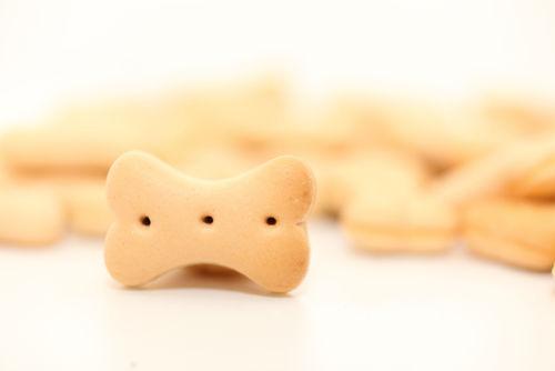 おからを原料にした犬用クッキー