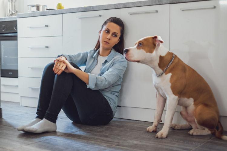 【獣医師監修】犬のうんち・おならが臭い。この症状から考えられる原因や病気は?