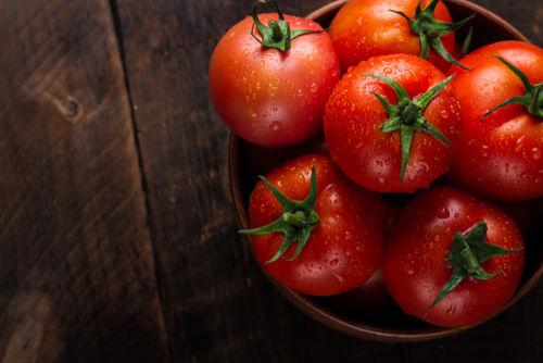 注意点① 犬に食べさせていいのは「完熟トマト」