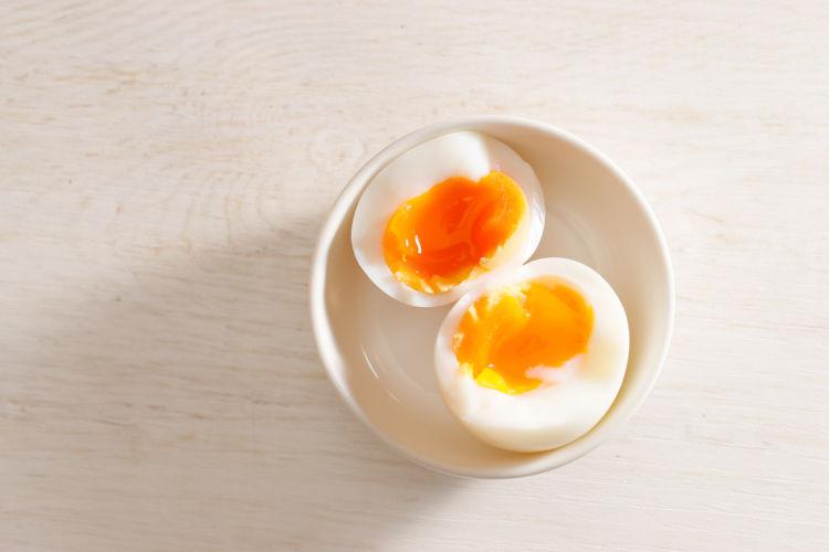 【獣医師監修】犬がゆで卵を盗み食い、食べても大丈夫?アレルギーや生卵を与えても大丈夫?