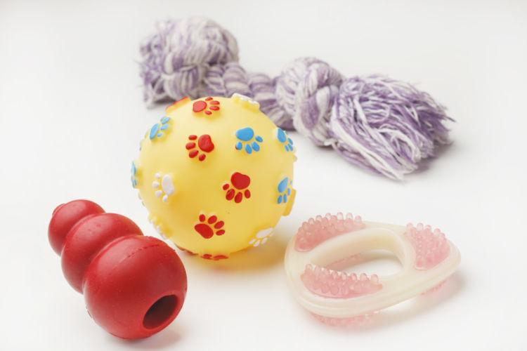 犬用ガムとおもちゃの併用もおすすめ!