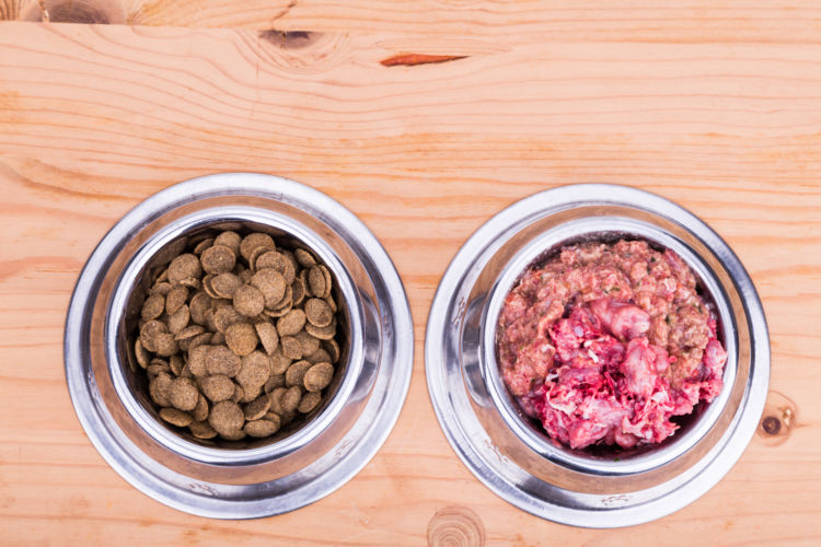 愛犬に生肉を与える際の注意点③ 「摂取カロリー全体の2割まで」