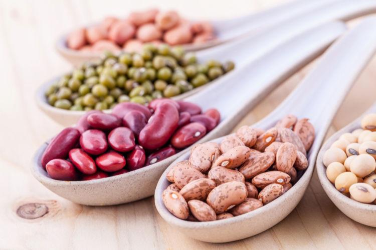 タンパク質が豊富な「豆類」