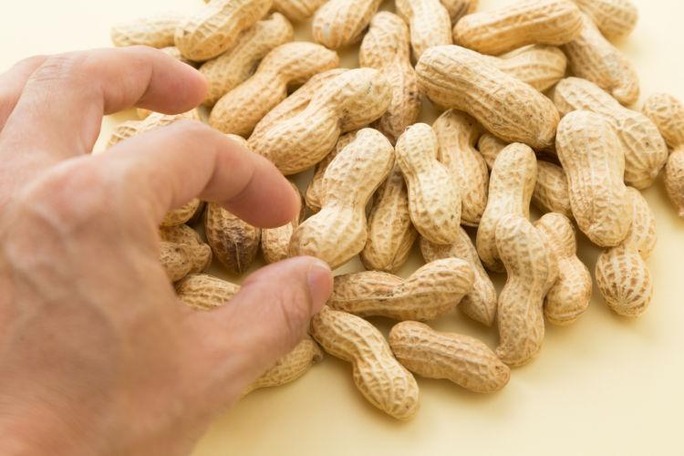 愛犬に与えるピーナッツの中毒性は?