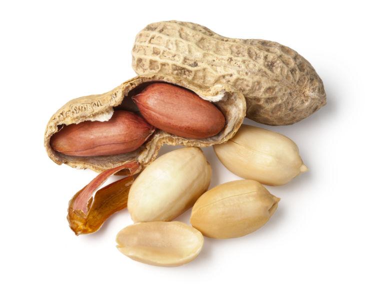 愛犬がピーナッツを食べてこんな症状が出たらアレルギーかも?