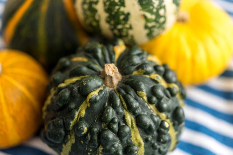 かぼちゃの注意点①「カロリーが高いので食べさせすぎない!」