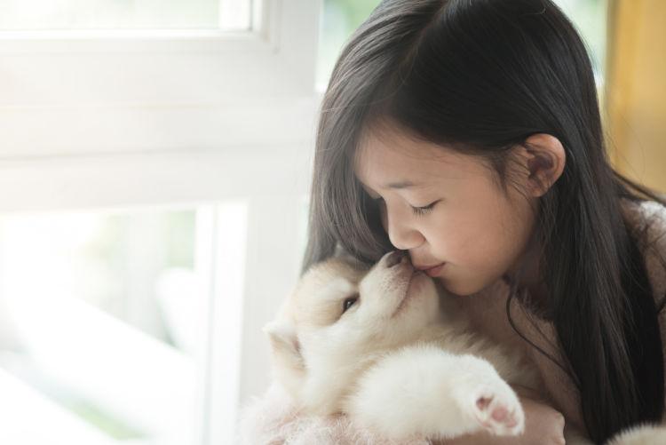 【犬が舐める理由】その①~野生本能には逆らえない!?舐めるのは本能のなせる業