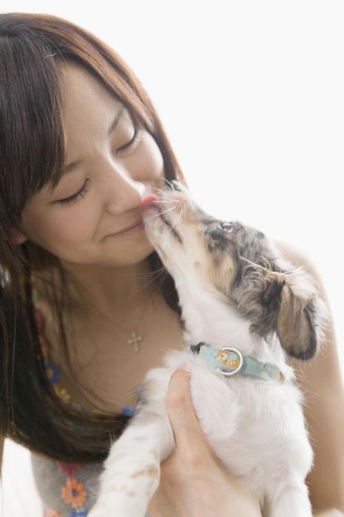 【犬が舐める理由】その④~舐めると飼い主が喜ぶ?「学習」としての行為