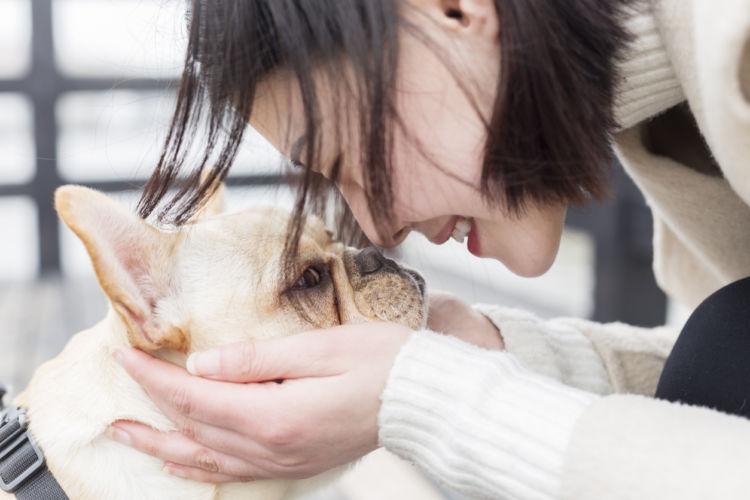 愛犬との幸せな時間