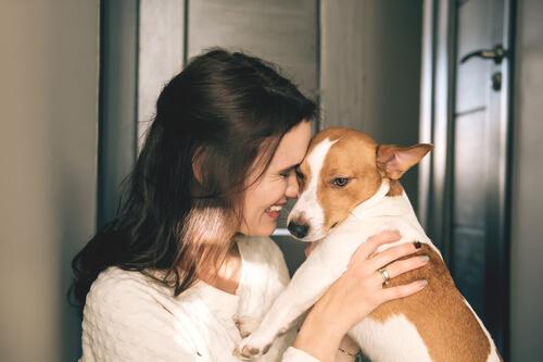 犬が「抱っこをせがむ」ようになった飼い主に実践してほしいこと