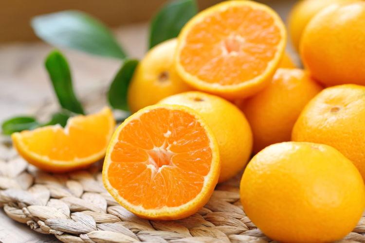 【獣医師監修】犬がオレンジを食べても大丈夫!?「皮」や「アレルギー(中毒)」に注意!