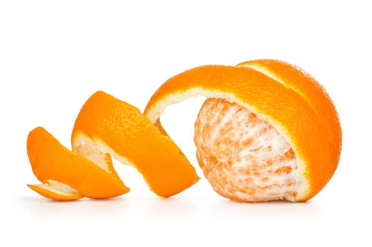 犬がオレンジの「皮」や「種」を誤飲しないように注意!