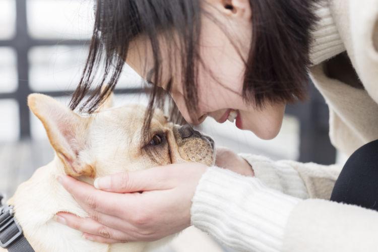 犬の顎骨骨折(上顎・下顎)と間違えやすい病気