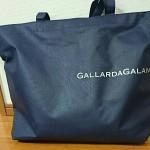 GALLARDAGALANTE2015-8