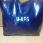 SHIPS2013-1