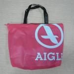 AIGLE2013-1