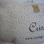 crisp2011-1