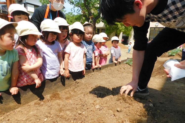 学校法人柿の実学園(柿の実学園グループ)_しらかし保育園