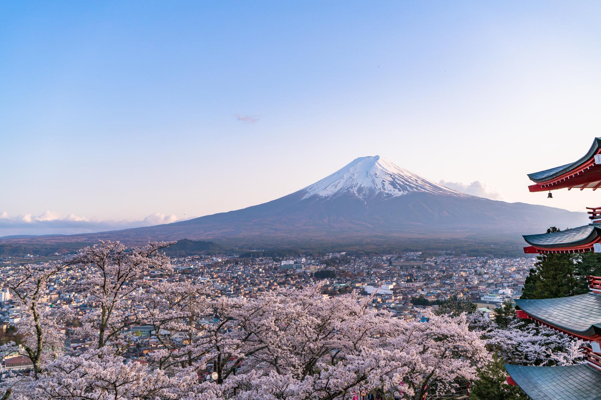 卒園記念に「富士登山」!?NHKでも紹介された「若木保育園」