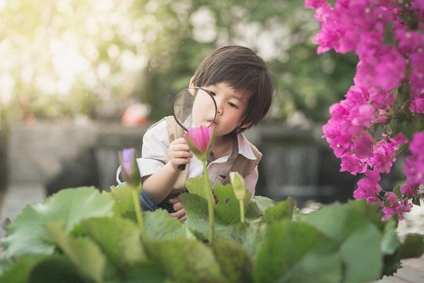 花を観察する男の子