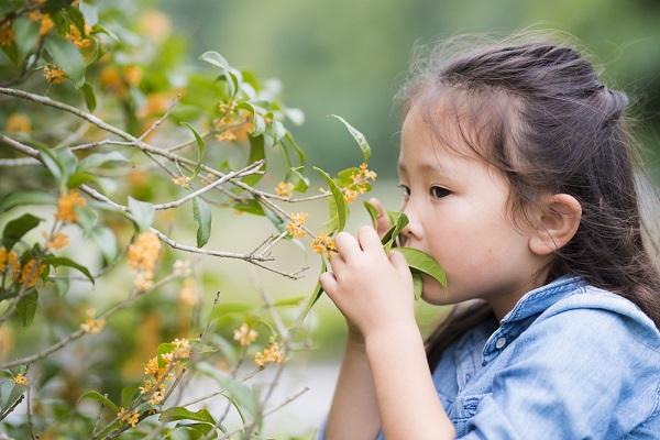 9月の4歳児の写真