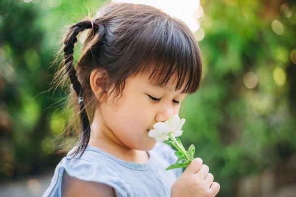 保育園で行う自然遊びのねらいや効果とは。夏や春などに楽しむ葉っぱや虫との遊び方
