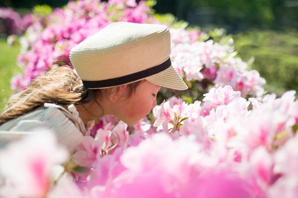 お花のにおいをかぐ女の子